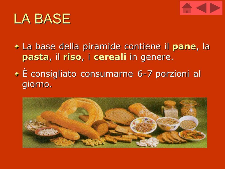 LA BASE La base della piramide contiene il pane, la pasta, il riso, i cereali in genere. È consigliato consumarne 6-7 porzioni al giorno.