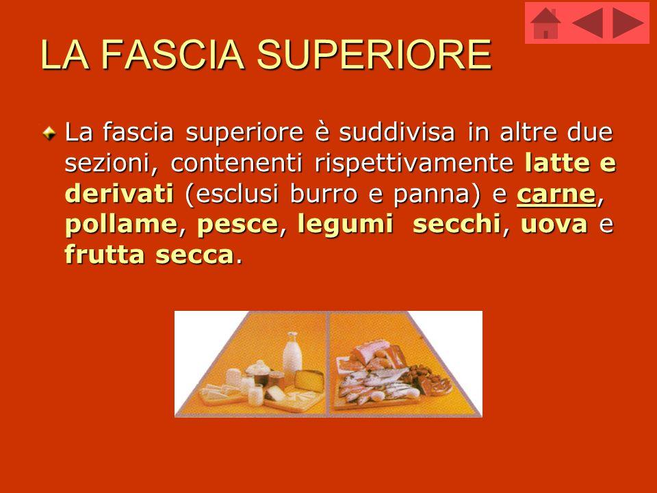 LA FASCIA SUPERIORE La fascia superiore è suddivisa in altre due sezioni, contenenti rispettivamente latte e derivati (esclusi burro e panna) e carne,