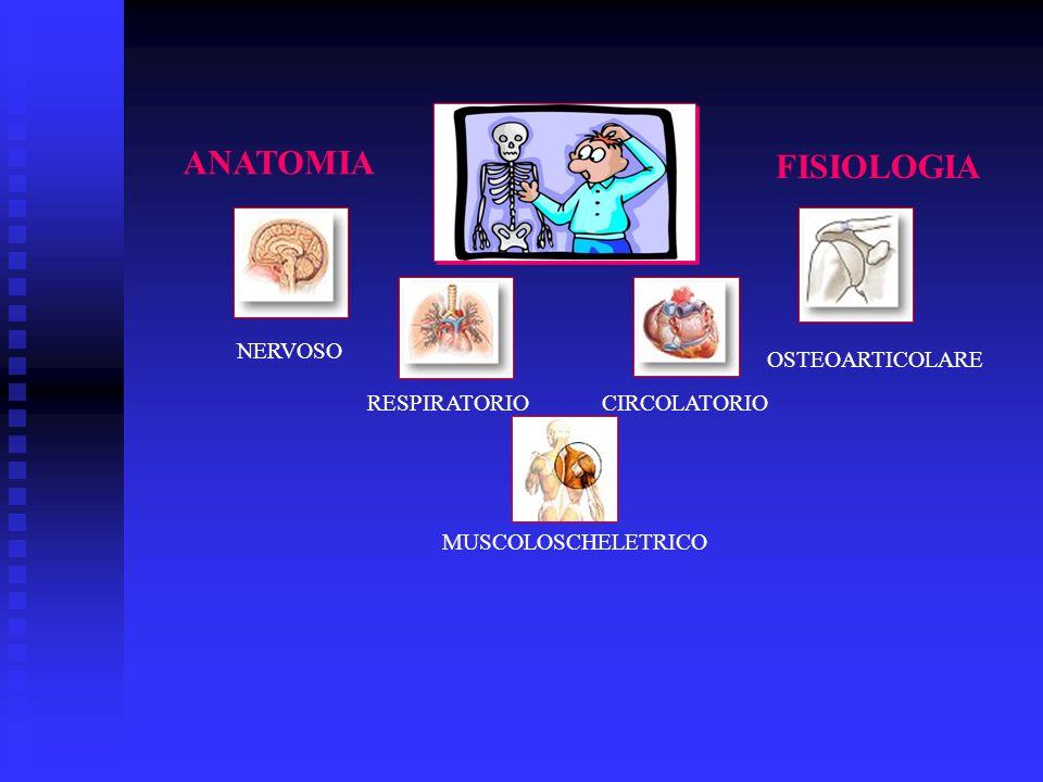 ANATOMIA FISIOLOGIA NERVOSO RESPIRATORIOCIRCOLATORIO OSTEOARTICOLARE MUSCOLOSCHELETRICO