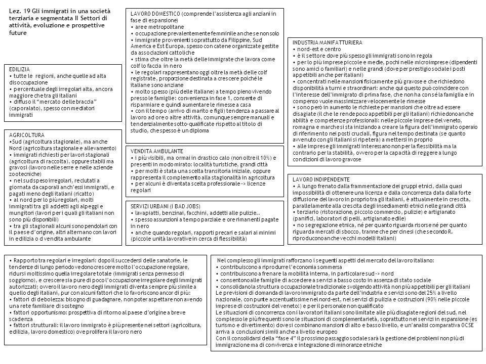 Lez. 19 Gli immigrati in una società terziaria e segmentata II Settori di attività, evoluzione e prospettive future LAVORO DOMESTICO (comprende lassis