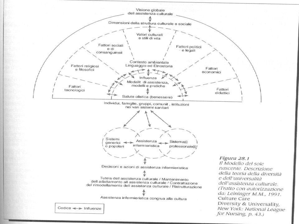 Marisa Cantarelli Modello delle prestazioni infermieristiche Modello manageriale che fa proprie le istanze di professionalizzazione degli infermieri
