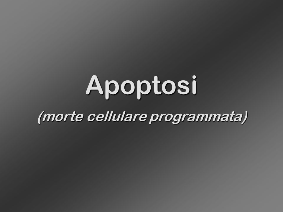 Apoptosi (morte cellulare programmata)