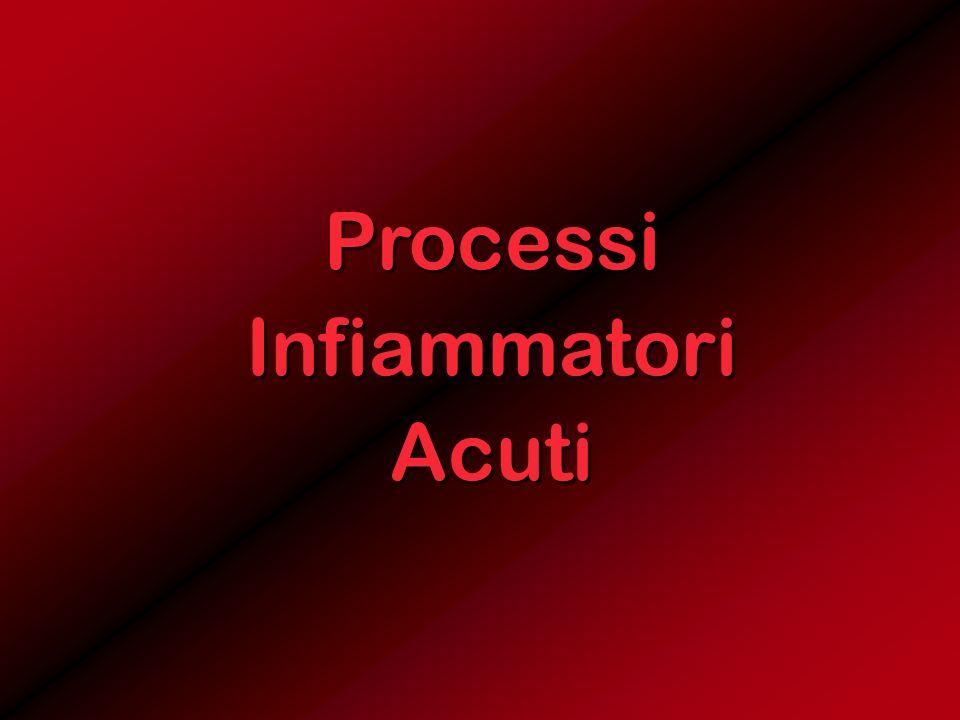 ProcessiInfiammatoriAcuti