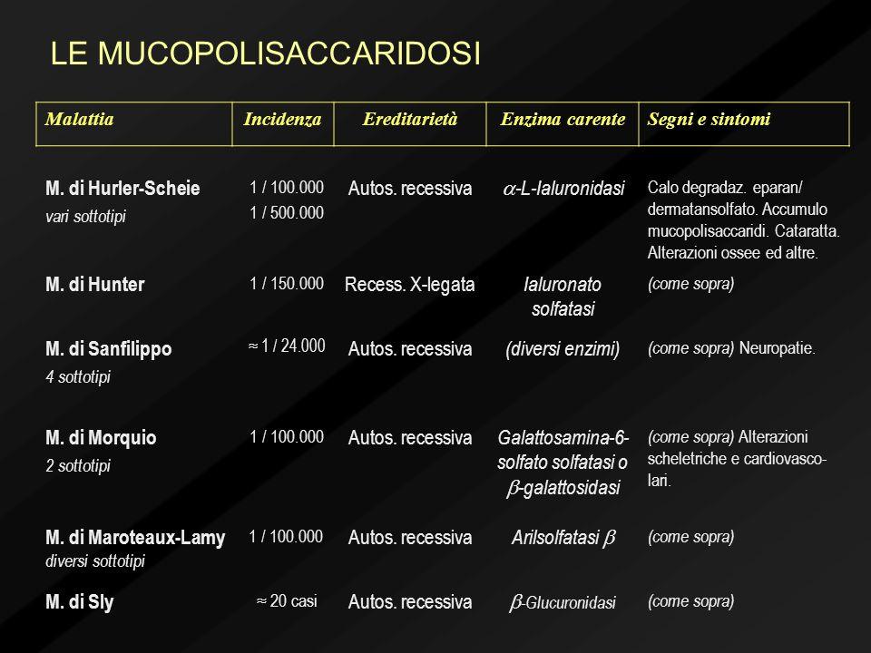 M. di Hurler-Scheie vari sottotipi 1 / 100.000 1 / 500.000 Autos. recessiva -L-Ialuronidasi Calo degradaz. eparan/ dermatansolfato. Accumulo mucopolis