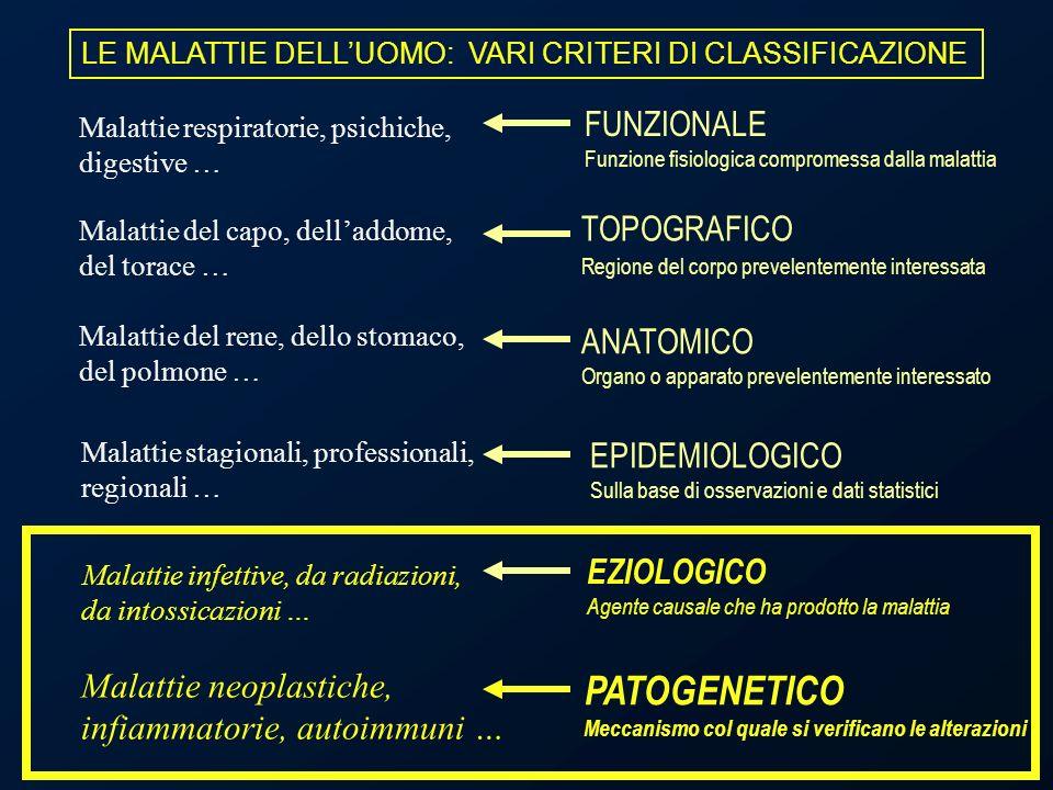 LE MALATTIE DELLUOMO: VARI CRITERI DI CLASSIFICAZIONE Malattie del capo, delladdome, del torace … Malattie del rene, dello stomaco, del polmone … Mala