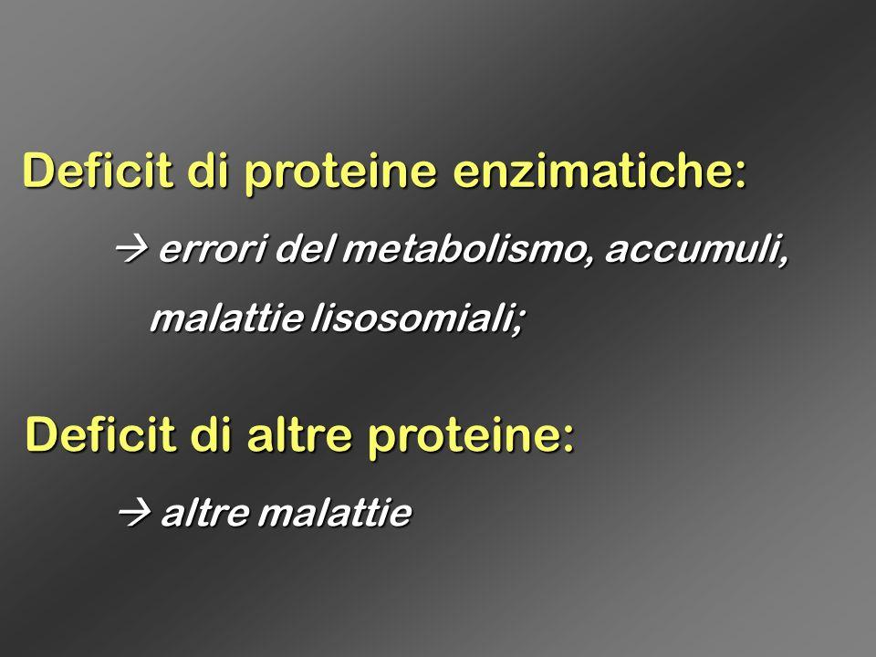 Deficit di proteine enzimatiche: errori del metabolismo, accumuli, errori del metabolismo, accumuli, malattie lisosomiali; malattie lisosomiali; Defic