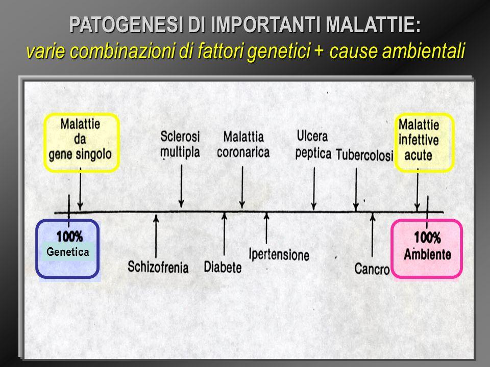 PATOGENESI DI IMPORTANTI MALATTIE: varie combinazioni di fattori genetici + cause ambientali Genetica