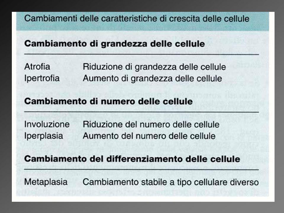 Disturbi della crescita cellulare