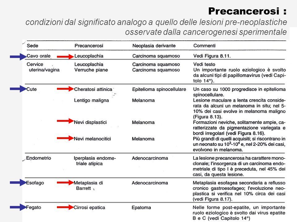 Le Precancerosi (Lesioni Preneoplastiche)
