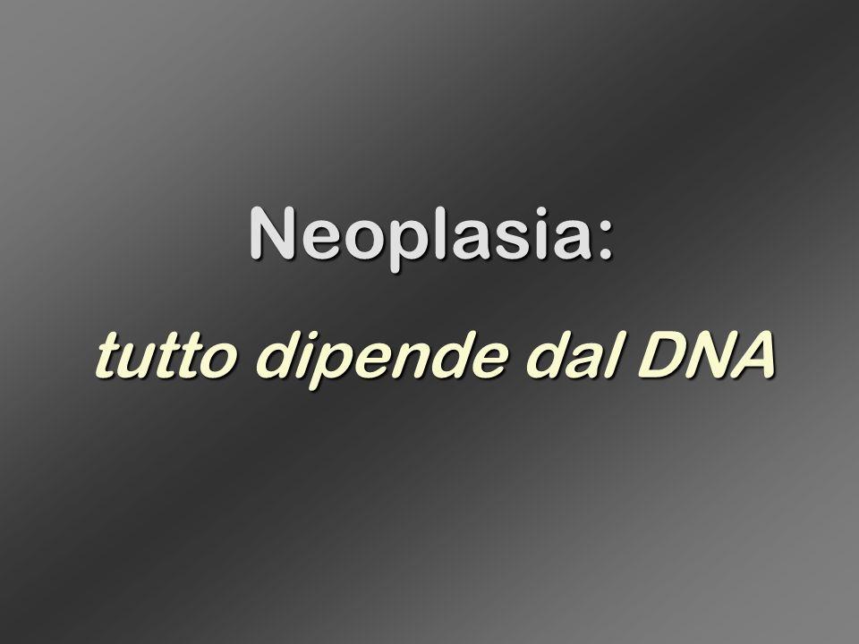 La trasformazione neoplastica : un processo cellulare Nelle cellule tumorali, a causa di mutazioni intervenute nei geni corrispondenti, sono alterate