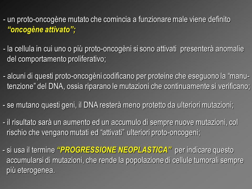 RIASSUMENDO I DATI A DISPOSIZIONE: - nel corredo genetico delle cellule NORMALI ci sono numerosi geni che codificano per proteine che regolano la divi