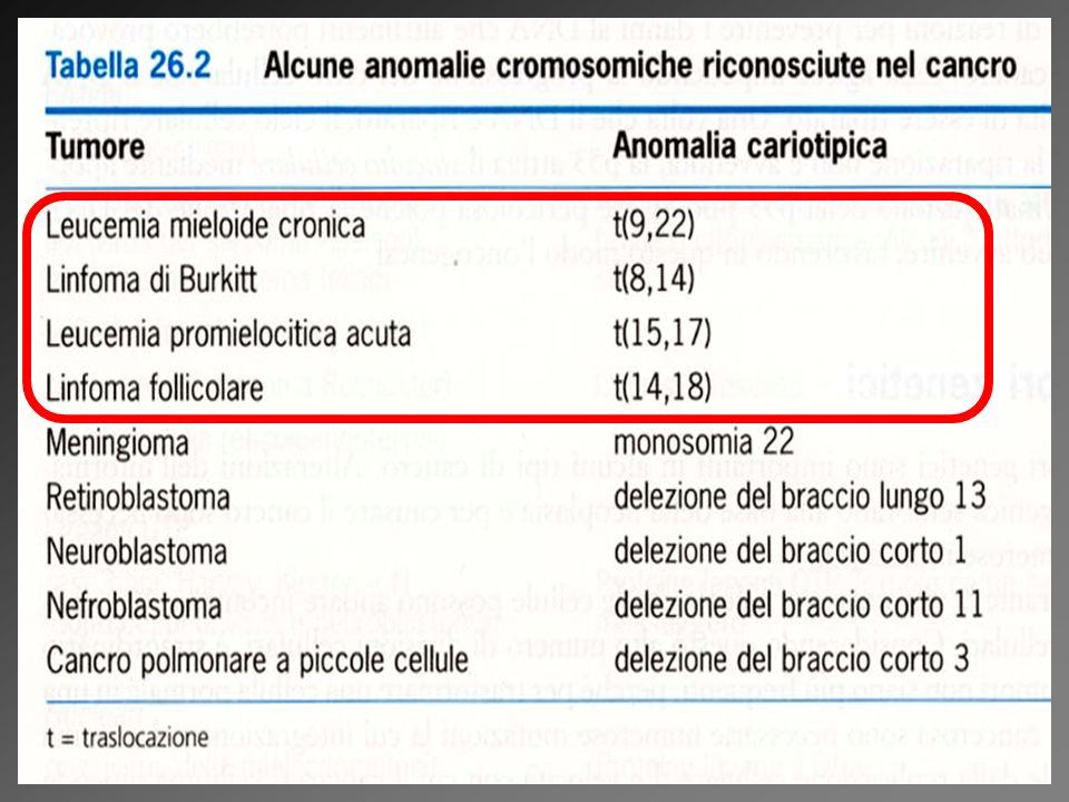 Anomalie citogenetiche nelle neoplasie (citogenetico = dei cromosomi)