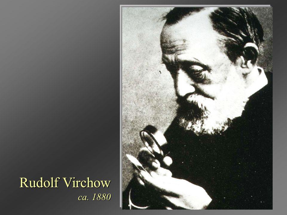 Rudolf Virchow ca. 1880
