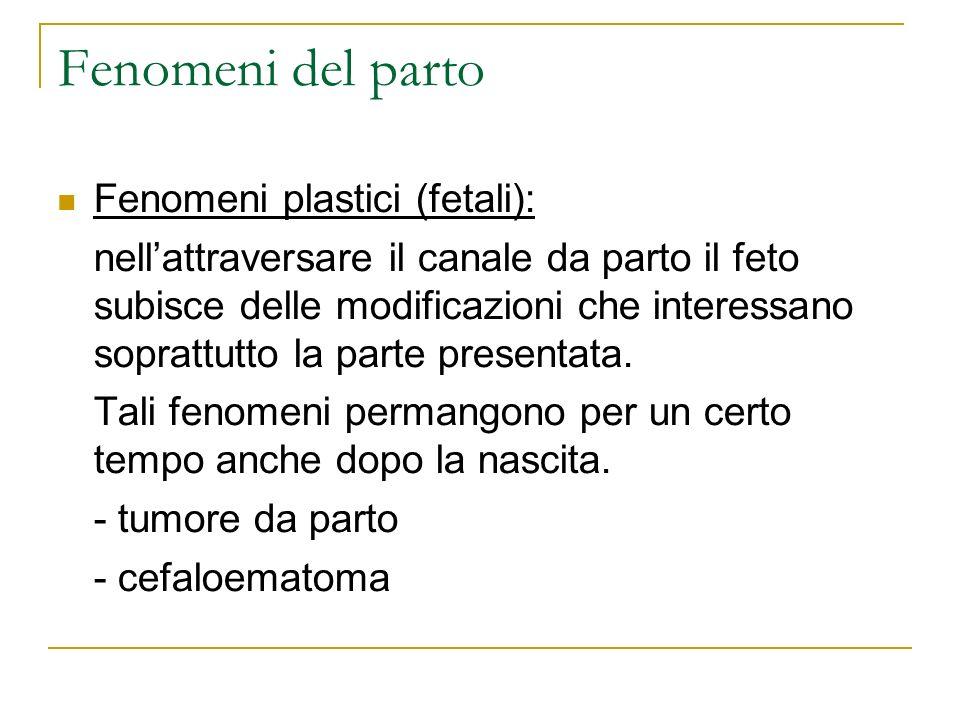 Fenomeni del parto Fenomeni plastici (fetali): nellattraversare il canale da parto il feto subisce delle modificazioni che interessano soprattutto la