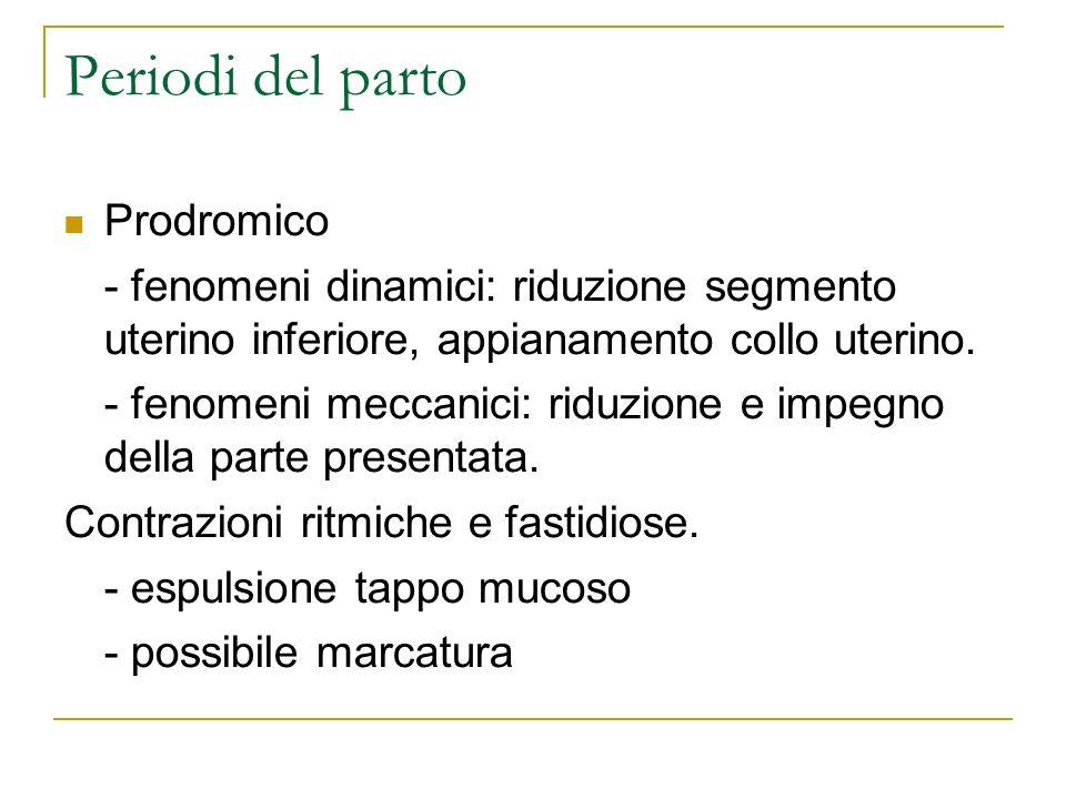 Periodi del parto Prodromico - fenomeni dinamici: riduzione segmento uterino inferiore, appianamento collo uterino. - fenomeni meccanici: riduzione e