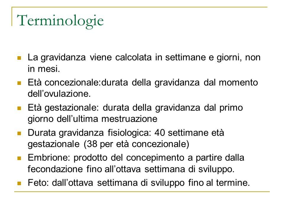 Terminologie La gravidanza viene calcolata in settimane e giorni, non in mesi. Età concezionale:durata della gravidanza dal momento dellovulazione. Et
