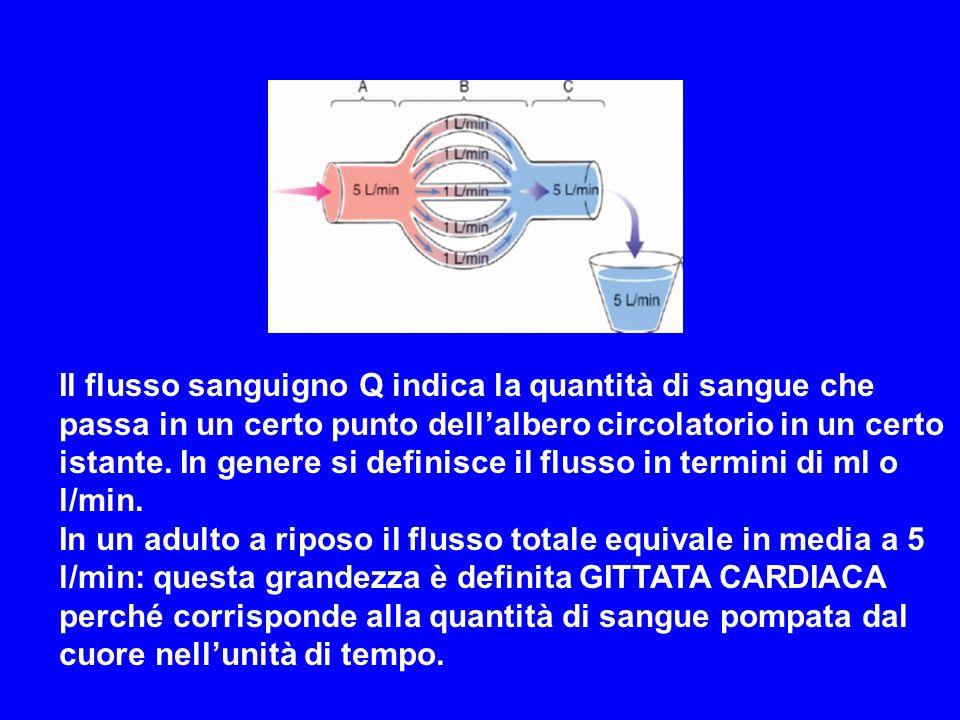 Il flusso sanguigno Q indica la quantità di sangue che passa in un certo punto dellalbero circolatorio in un certo istante. In genere si definisce il