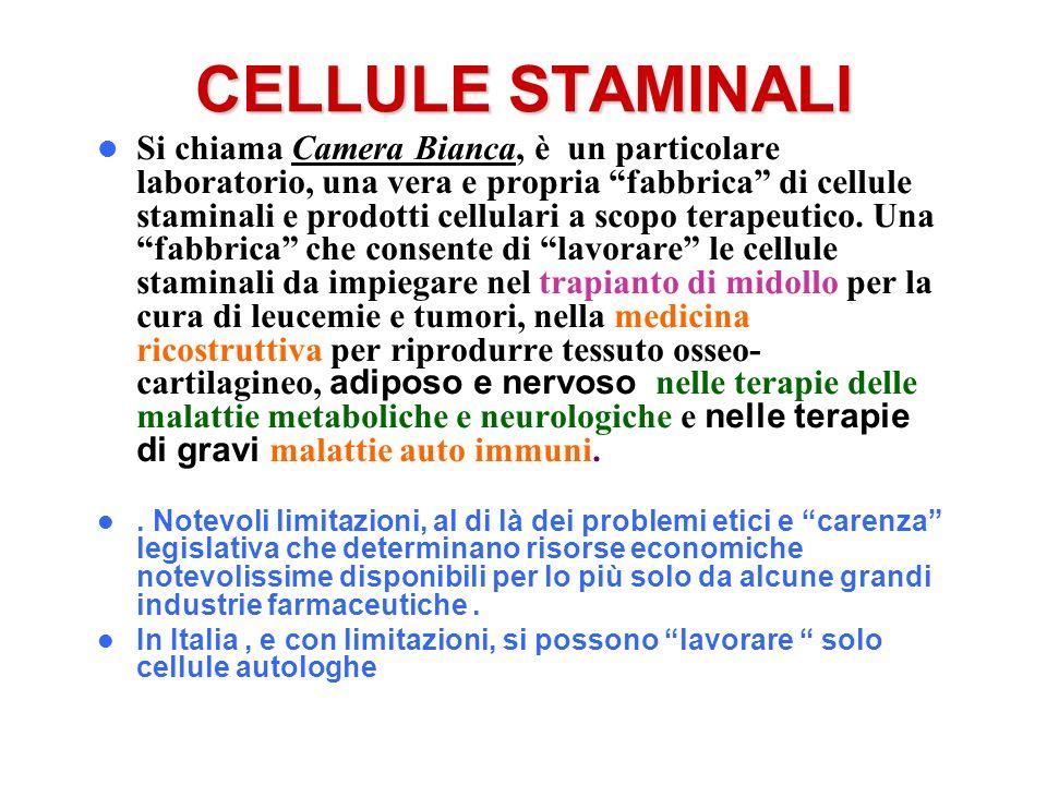 CELLULE STAMINALI Si chiama Camera Bianca, è un particolare laboratorio, una vera e propria fabbrica di cellule staminali e prodotti cellulari a scopo