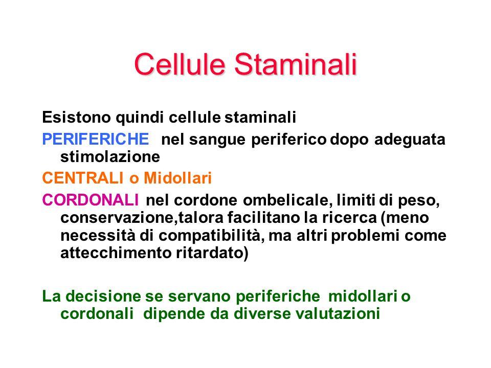 Cellule Staminali Esistono quindi cellule staminali PERIFERICHE nel sangue periferico dopo adeguata stimolazione CENTRALI o Midollari CORDONALI nel co