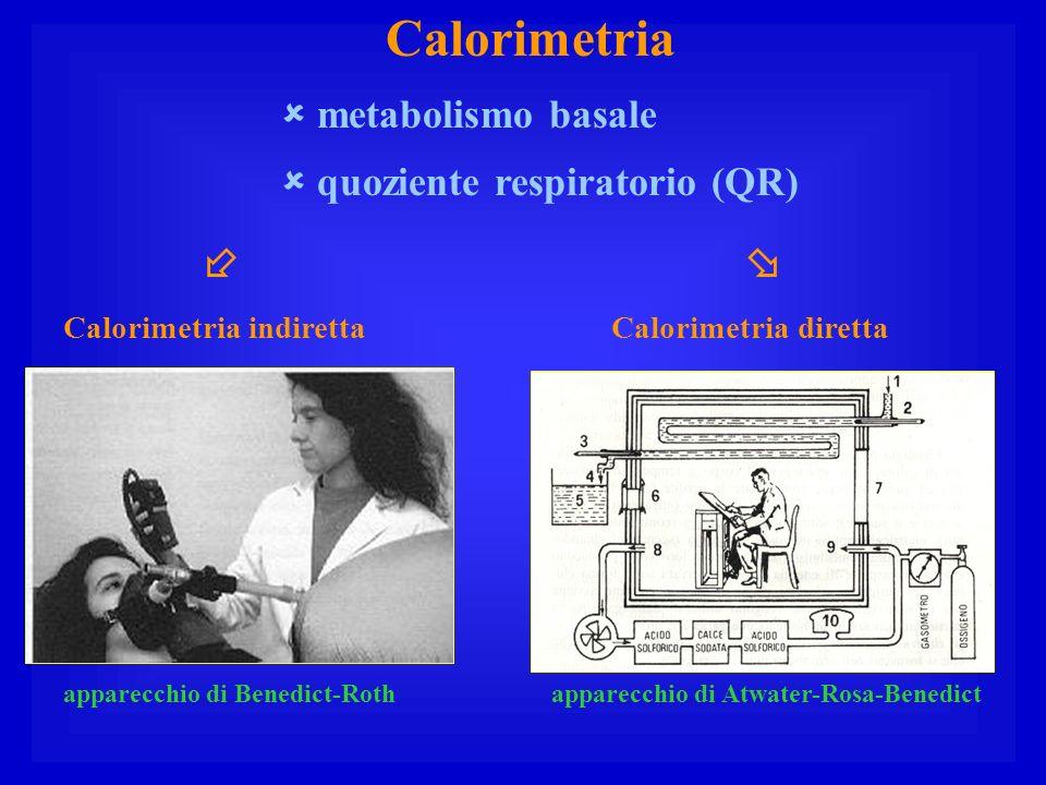 Calorimetria metabolismo basale quoziente respiratorio (QR) Calorimetria indiretta apparecchio di Benedict-Rothapparecchio di Atwater-Rosa-Benedict Ca