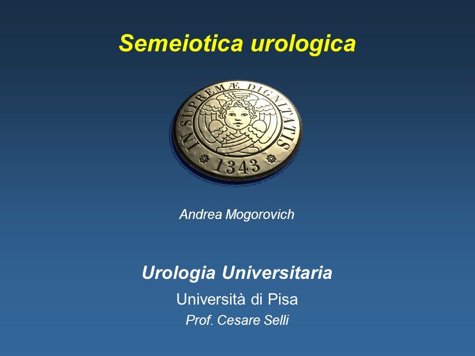 Semeiotica urologica Urologia Universitaria Università di Pisa Prof. Cesare Selli Andrea Mogorovich
