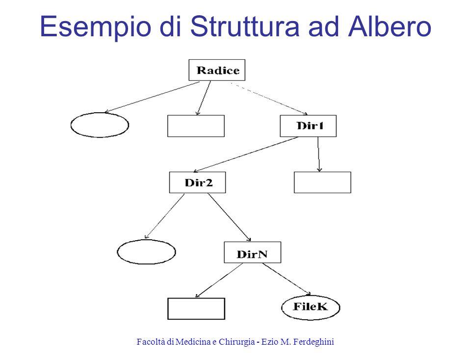 Facoltà di Medicina e Chirurgia - Ezio M. Ferdeghini Esempio di Struttura ad Albero