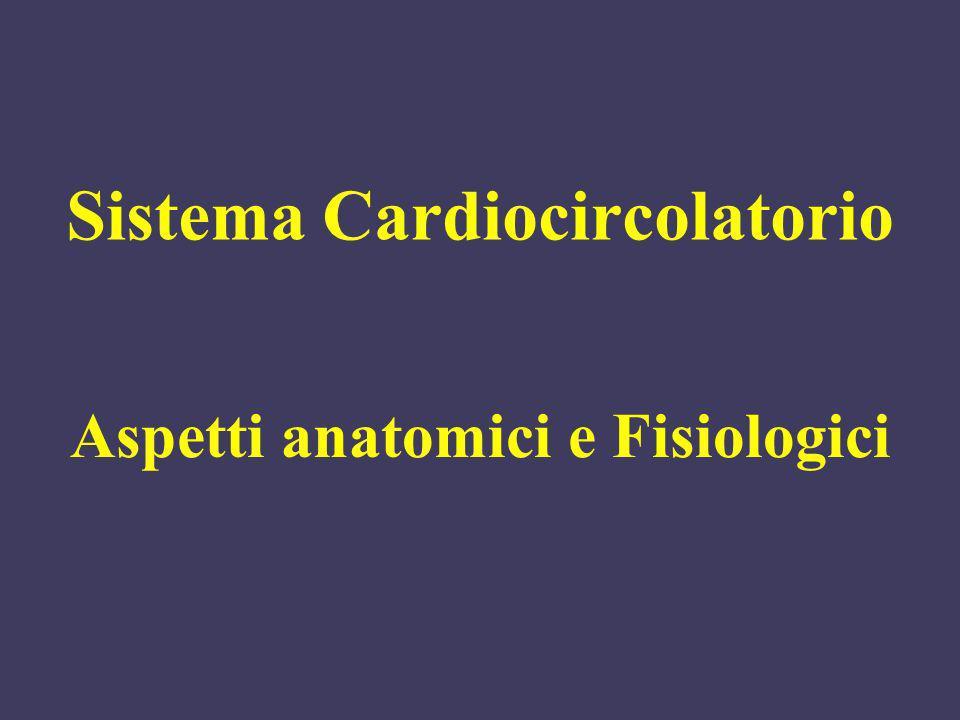 Sistema Cardiocircolatorio Aspetti anatomici e Fisiologici