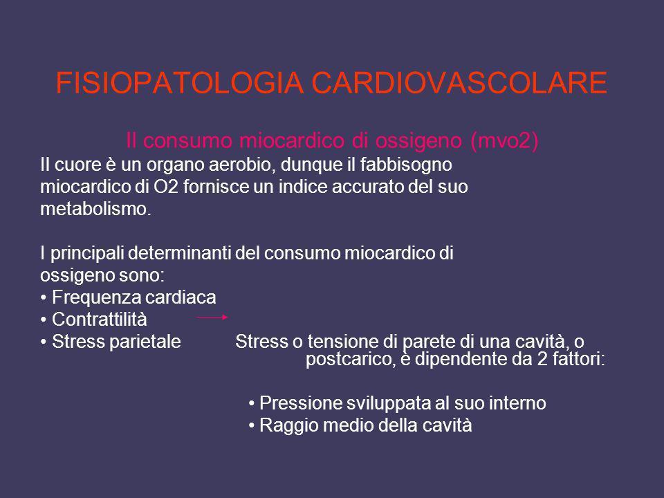 FISIOPATOLOGIA CARDIOVASCOLARE Il consumo miocardico di ossigeno (mvo2) Il cuore è un organo aerobio, dunque il fabbisogno miocardico di O2 fornisce u