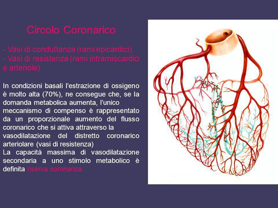 Circolo Coronarico - Vasi di conduttanza (rami epicardici) - Vasi di resistenza (rami intramiocardici e arteriole) In condizioni basali lestrazione di