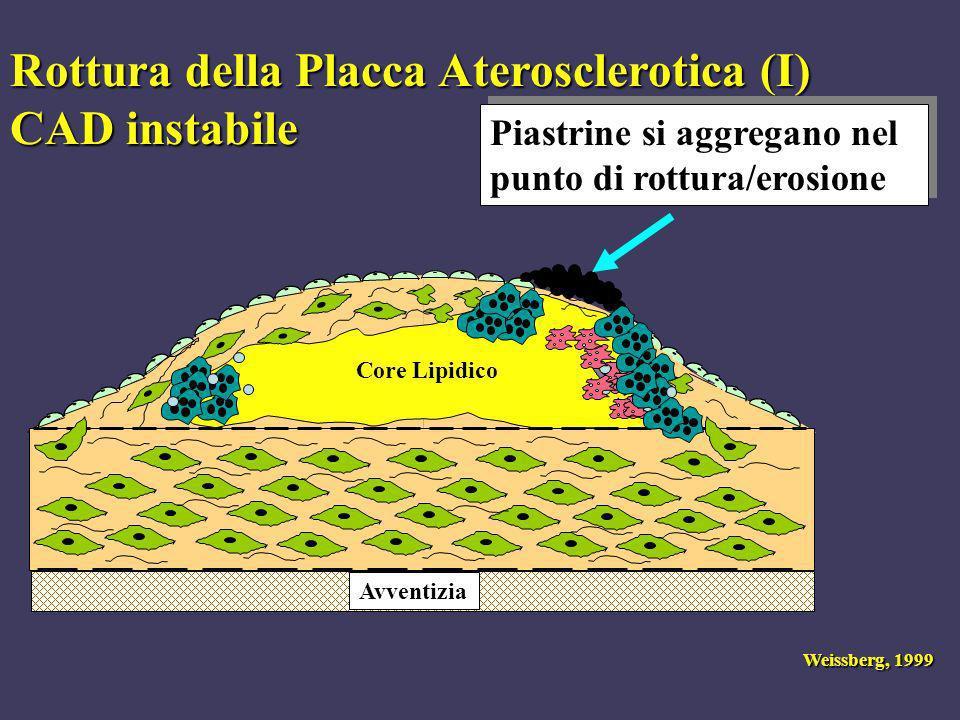 Avventizia Rottura della Placca Aterosclerotica (I) CAD instabile Piastrine si aggregano nel punto di rottura/erosione Weissberg, 1999 Core Lipidico
