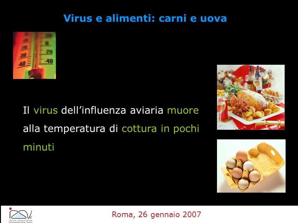 Virus e alimenti: carni e uova Il virus dellinfluenza aviaria muore alla temperatura di cottura in pochi minuti Roma, 26 gennaio 2007