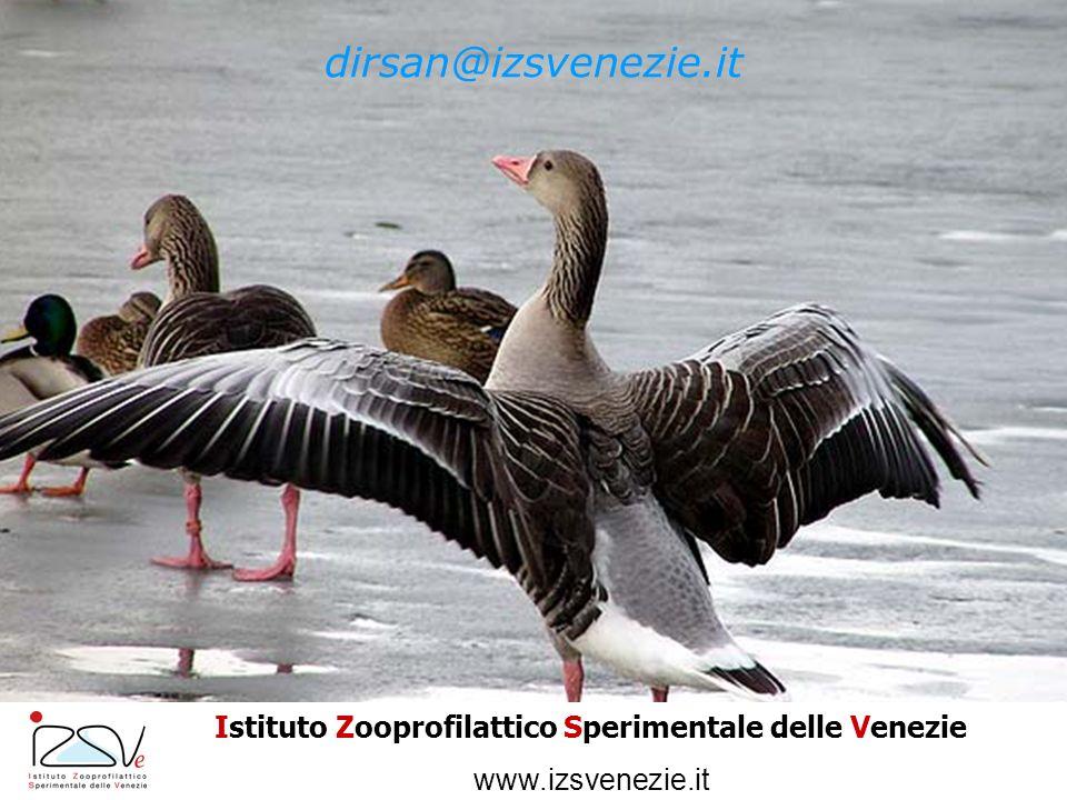 dirsan@izsvenezie.it Istituto Zooprofilattico Sperimentale delle Venezie www.izsvenezie.it