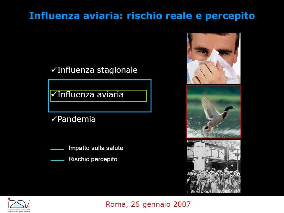 Influenza stagionale Influenza aviaria Pandemia Impatto sulla salute Rischio percepito Influenza aviaria: rischio reale e percepito Roma, 26 gennaio 2