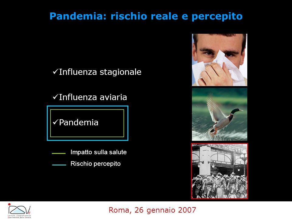 Influenza stagionale Influenza aviaria Pandemia Impatto sulla salute Rischio percepito Pandemia: rischio reale e percepito Roma, 26 gennaio 2007