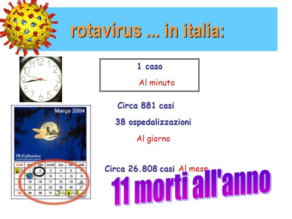 rotavirus...