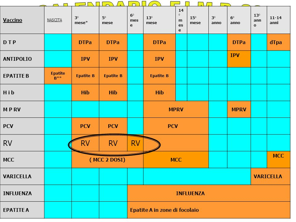 Vaccino NASCITA 3° mese* 5° mese 6° mes e 13° mese 14 ° m es e 15° mese 3° anno 6° anno 13° ann o 11-14 anni D T PDTPa dTpa ANTIPOLIOIPV EPATITE B Epatite B** Epatite B H i b M P RV PCV RV MCC( MCC 2 DOSI)MCC VARICELLA INFLUENZA EPATITE AEpatite A in zone di focolaio