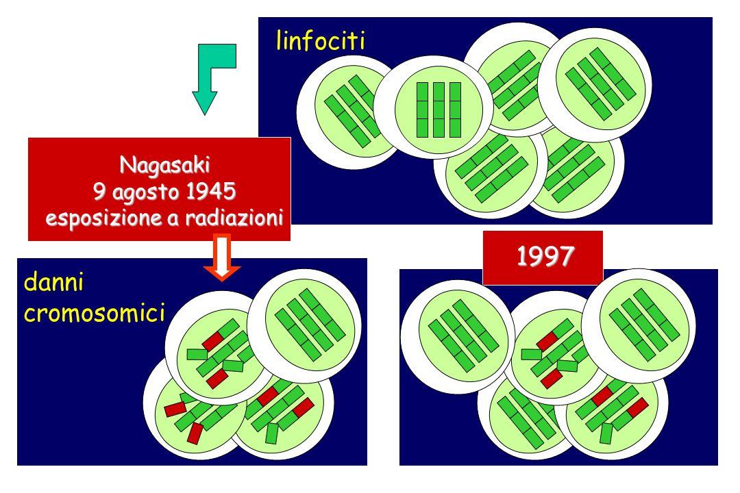 linfociti Nagasaki 9 agosto 1945 esposizione a radiazioni danni cromosomici 1997