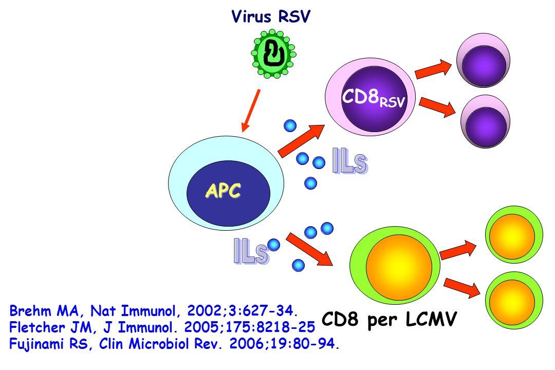 Virus RSV CD8 RSV APC CD8 per LCMV Brehm MA, Nat Immunol, 2002;3:627-34. Fletcher JM, J Immunol. 2005;175:8218-25 Fujinami RS, Clin Microbiol Rev. 200