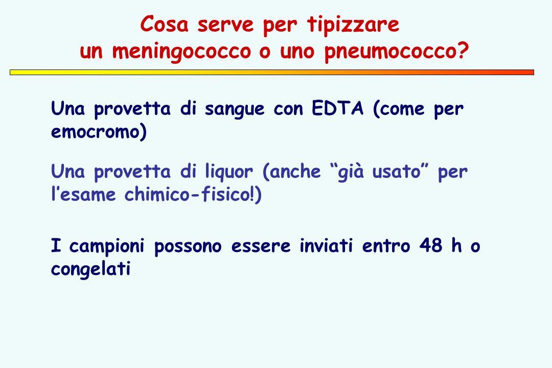 Una provetta di sangue con EDTA (come per emocromo) Cosa serve per tipizzare un meningococco o uno pneumococco.