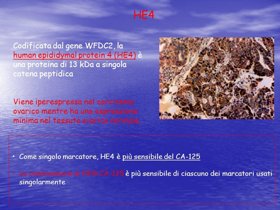 Codificata dal gene WFDC2, la human epididymal protein 4 (HE4) è una proteina di 13 kDa a singola catena peptidica Viene iperespressa nel carcinoma ov