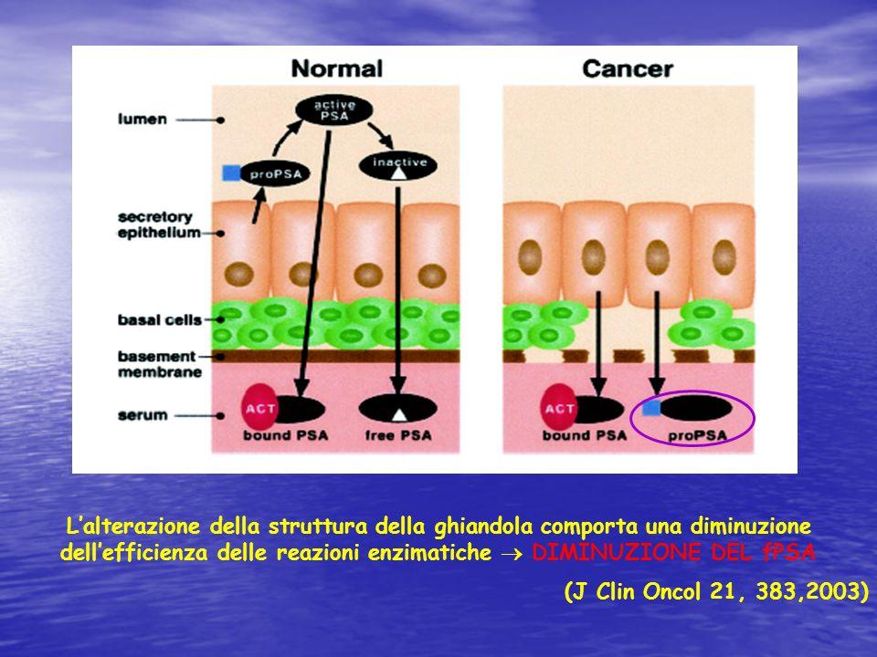 Lalterazione della struttura della ghiandola comporta una diminuzione dellefficienza delle reazioni enzimatiche DIMINUZIONE DEL fPSA (J Clin Oncol 21,