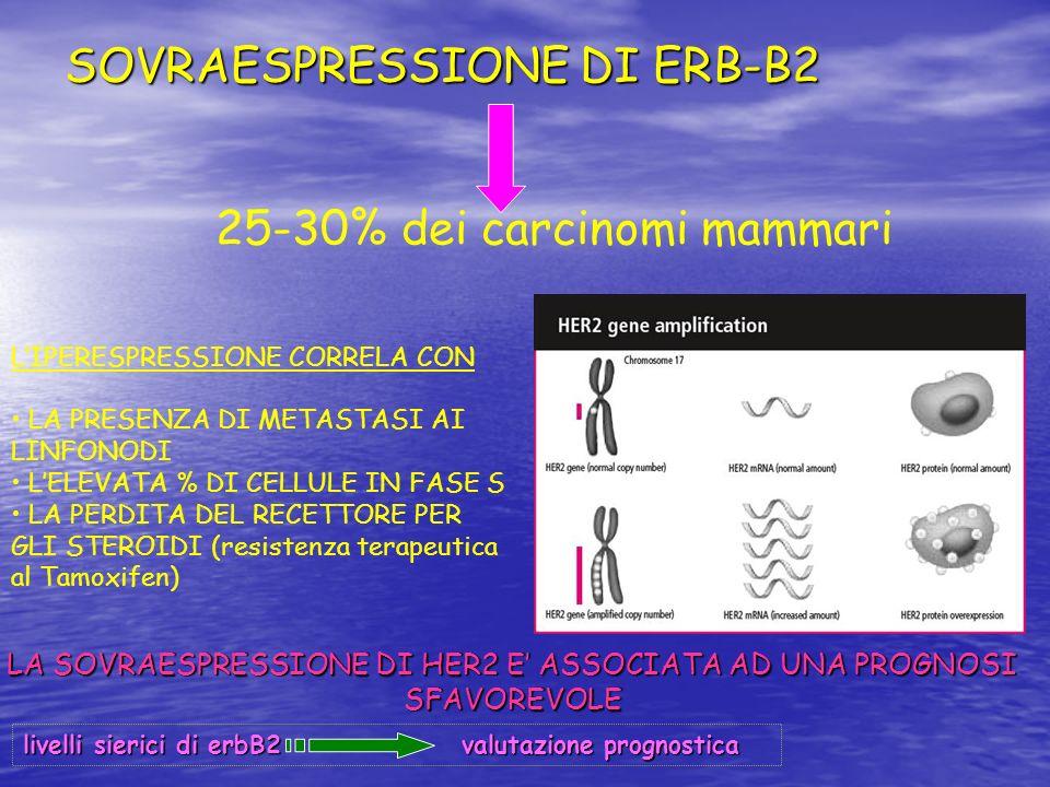 SOVRAESPRESSIONE DI ERB-B2 25-30% dei carcinomi mammari LIPERESPRESSIONE CORRELA CON LA PRESENZA DI METASTASI AI LINFONODI LELEVATA % DI CELLULE IN FA