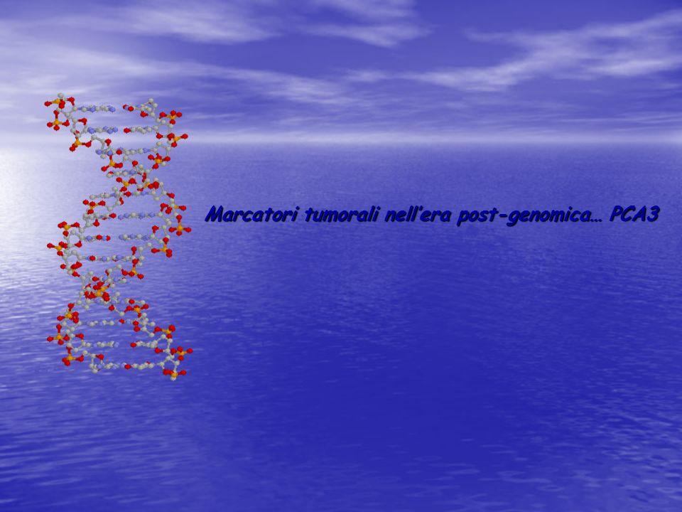 Marcatori tumorali nellera post-genomica… PCA3