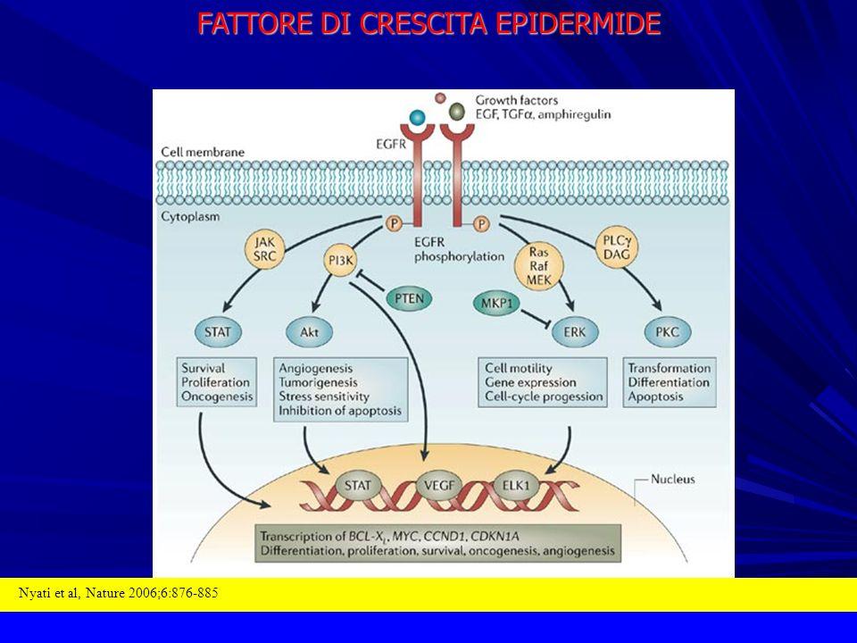 FATTORE DI CRESCITA EPIDERMIDE Nyati et al, Nature 2006;6:876-885