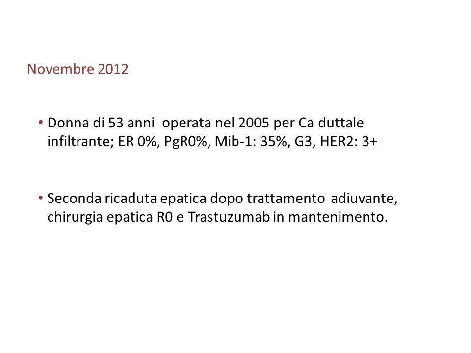 Novembre 2012 Donna di 53 anni operata nel 2005 per Ca duttale infiltrante; ER 0%, PgR0%, Mib-1: 35%, G3, HER2: 3+ Seconda ricaduta epatica dopo tratt