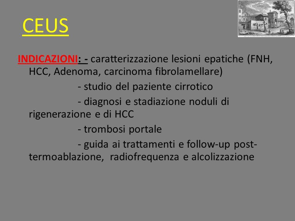 INDICAZIONI: - caratterizzazione lesioni epatiche (FNH, HCC, Adenoma, carcinoma fibrolamellare) - studio del paziente cirrotico - diagnosi e stadiazione noduli di rigenerazione e di HCC - trombosi portale - guida ai trattamenti e follow-up post- termoablazione, radiofrequenza e alcolizzazione