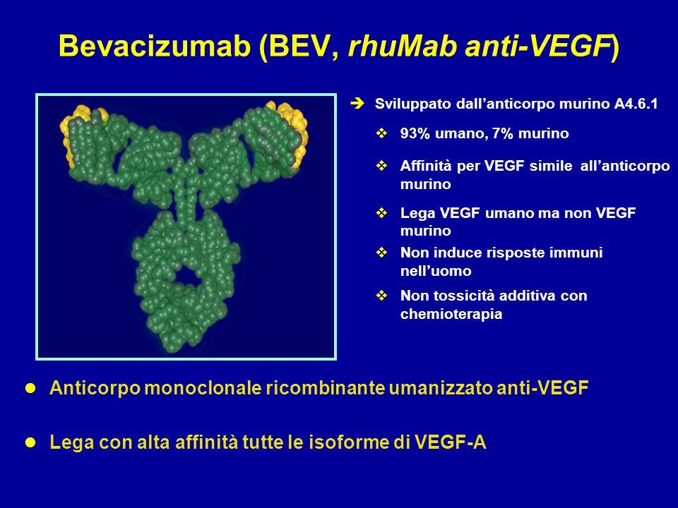 marker predittivi di efficacia Ipertensione arteriosa Osterlund et al, Br J Cancer 2011 Cellule endoteliali circolanti Ronzoni et al, Ann Oncol 2010 VEGF-1 circolante Duda et al, Oncologist 2010 Polimorfismi del gene VEGF Formica et al, Int J Colorectal Dis 2011