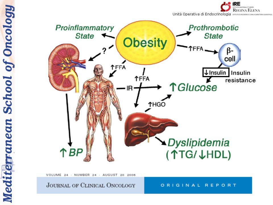 Unità Operativa di Endocrinologia Insulin resistance