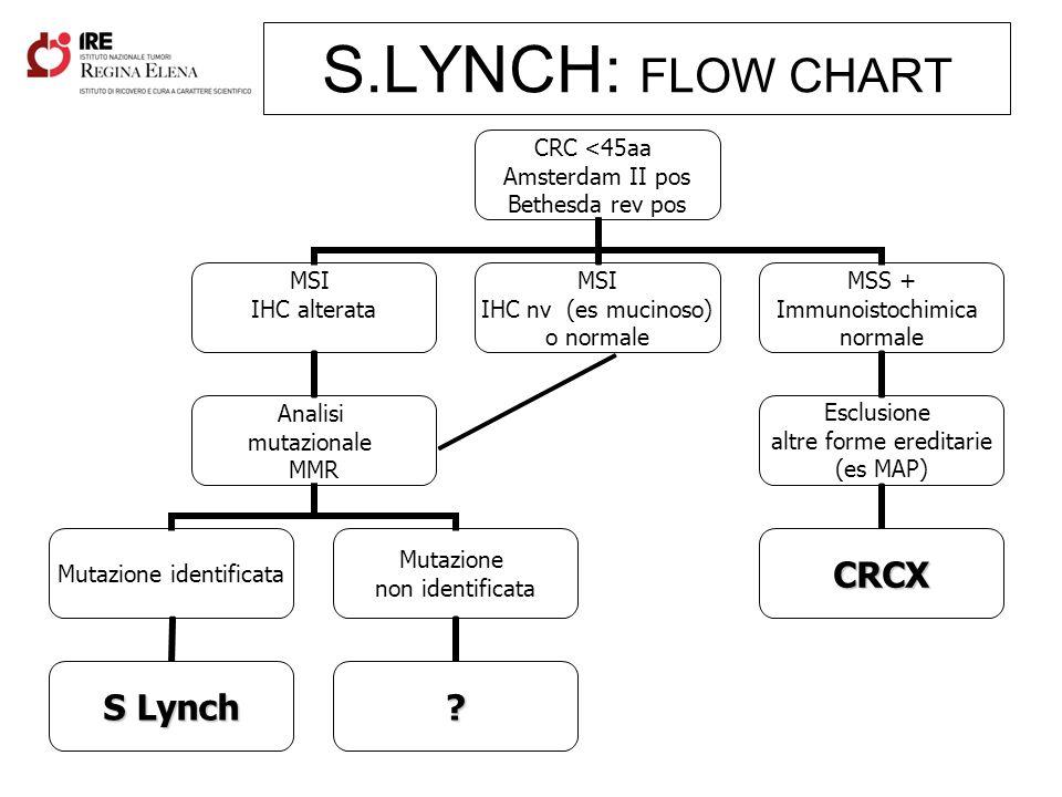 S.LYNCH: FLOW CHART