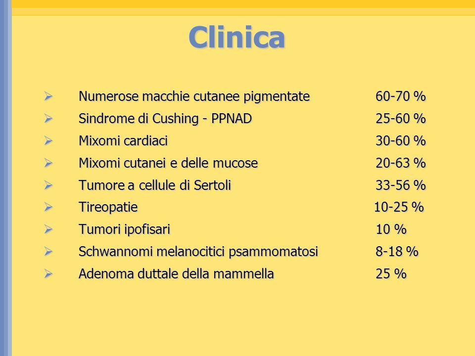 Clinica Numerose macchie cutanee pigmentate60-70 % Numerose macchie cutanee pigmentate60-70 % Sindrome di Cushing - PPNAD25-60 % Sindrome di Cushing -